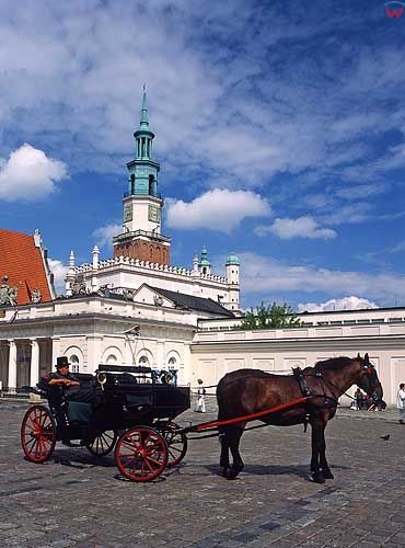 Poznań, rynek