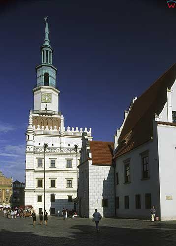 poznan d031431 fot. Wojciech Wojcik europa polska