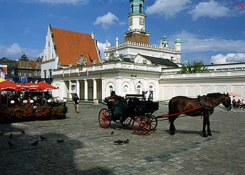 poznan d031450 fot. Wojciech Wojcik europa polska