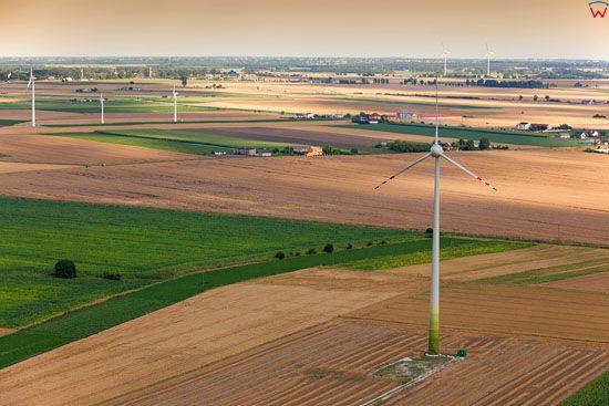 Silownie wiatrowe w okolicy Inowroclawia, 22.07.2013. EU, Pl, Kujawsko-Pomorskie. LOTNICZE.