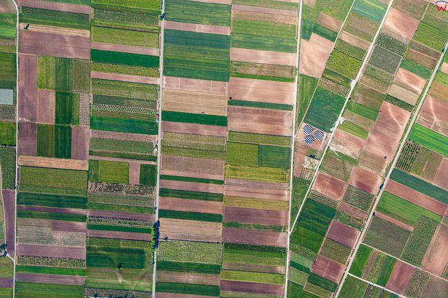 Grecja, panorama pol uprawnych w okolicy Katerini. EU, PL,