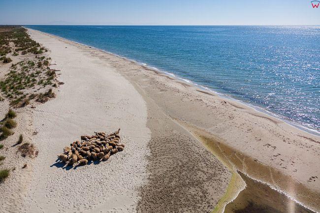 Grecja, Zachodnie wybrzeze Zatoki Termajskiej na morzu Egejskim. EU, PL, Lotnicze